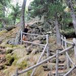 scala-di-legno