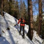 passaggio-nel-bosco