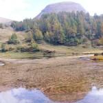 lago quota 1993