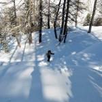 sulla dorsale nel bosco