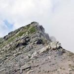 puntina rocciosa