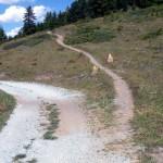 itinerario 2 - 33-bivio oltre chamolé
