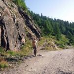 inizio sentiero dalla strada