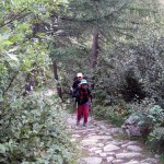 2 nel bosco