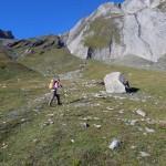 grossa pietra isolata