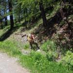 bivio sentiero quota 1845