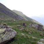 sopra i salti di roccia