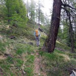 traverso nel bosco superiore