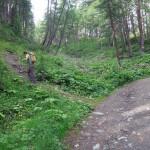 sentiero alla poderale