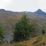 vallone dell'urtier