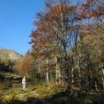autunno sulla busancano