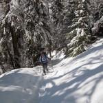 sentiero oltre le paline