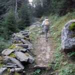 sentiero tra le poderali