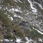 alpe-oro-di-rivelli