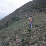 8-sentiero-dopo-alpe-campo