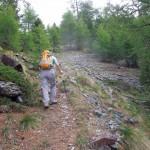 bosco-oltre-fouillou