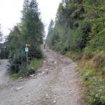 inizio-sentiero