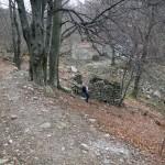 bivio-in-discesa-all'alpe-veidabia