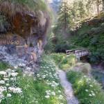 ponte-sul-torrente-loranco