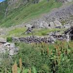 alpe-piana-ronchelli