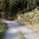 sentiero-dalla-sterrata