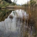 lago-di-lolair