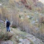 verso-il-fondovalle
