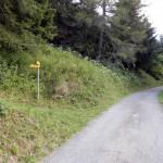 bivio-sulla-strada