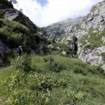 canale-di-rocce-e-erba