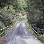 paline-al-ponte-di-tsarevesse