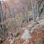 alla-palestra-di-roccia