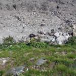 3a-ripida-discesa-sul-ghiacciaio